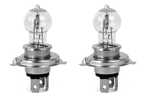 ARB Fat-Boy Replacement Bulbs ( Part Number: 4X41)
