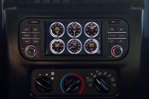 Insane Audio  Multimedia and Navigation Head Unit (Part Number: TJ1002)