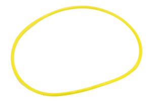 Dana Vacuum Seal O-Ring (Part Number: )